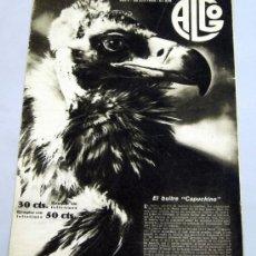 Coleccionismo de Revistas y Periódicos: REVISTA ALGO Nº 206 JULIO 1933 ACTUALIDAD ÉPOCA BUITRE CAPUCHINO PUBLICIDAD. Lote 39296474