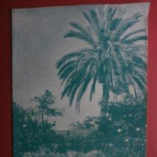Coleccionismo de Revistas y Periódicos: VALENCIA ATRACCION Nº270.1957.FERIA DE JULIO,RICARDO LLORENS,LIRIA,ALCOY,ONDARRA-PLAZA DE TOROS.. Lote 40984075