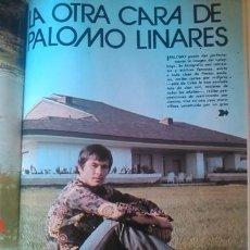 Coleccionismo de Revistas y Periódicos: RECORTE PALOMO LINARES. Lote 44709173