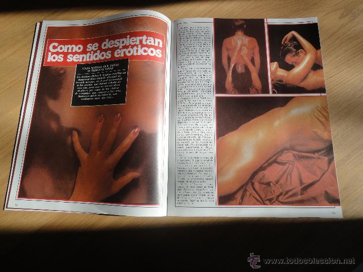 Coleccionismo de Revistas y Periódicos: Revista PEN # 17 / 1983 ~ BRIGITTE LAHAIE ~ JILLY JOHNSON ~ Sadomasoquismo ~ GRETA ANDERSEN - Foto 5 - 47145736