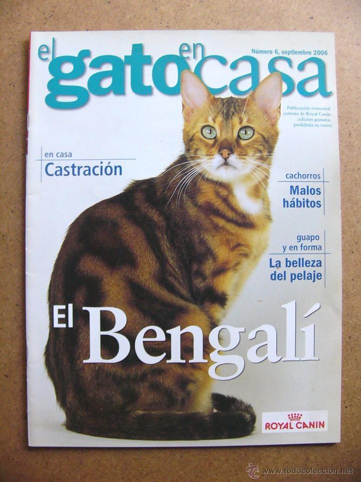 Revista el gato en casa n 6 el bengali castrac comprar - El gato en casa ...
