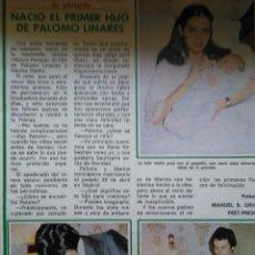 Coleccionismo de Revistas y Periódicos: RECORTE PALOMO LINARES. Lote 49569327