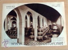 BODEGA SAN PATRICIO DE JEREZ 1932 EN RECORTE (R2737) 1 PÁGINA REVISTA BLANCO Y NEGRO ESE AÑO (Coleccionismo - Revistas y Periódicos Antiguos (hasta 1.939))