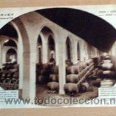Coleccionismo de Revistas y Periódicos: BODEGA SAN PATRICIO DE JEREZ 1932 EN RECORTE (R2737) 1 PÁGINA REVISTA BLANCO Y NEGRO ESE AÑO. Lote 49591522