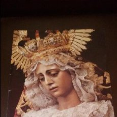 Coleccionismo de Revistas y Periódicos: REVISTA SEMANA SANTA DE SEVILLA - REGLA DE PIEDAD - CAJA SAN FERNANDO. Lote 131483201