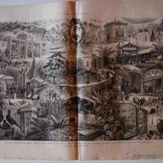 Coleccionismo de Revistas y Periódicos: GRABADO ILUSTRACIÓN ESPAÑOLA Y AMERICANA ORIGINAL 1880. EXPOSICION PLANTAS JARDIN DEL BUEN RETIRO. Lote 51941939