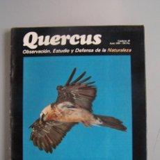 Coleccionismo de Revistas y Periódicos: REVISTA QUERCUS. CUADERNO 40. JUNIO 1989. Lote 52307650