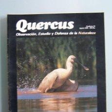 Coleccionismo de Revistas y Periódicos: REVISTA QUERCUS. CUADERNO 54. AGOSTO 1990. Lote 52314346