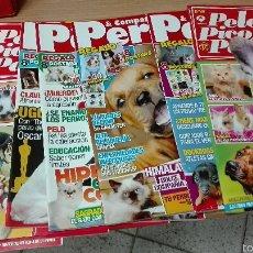 Coleccionismo de Revistas y Periódicos: LOTE DE 10 REVISTAS DE PERROS. Lote 54700985