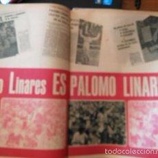 Coleccionismo de Revistas y Periódicos: RECORTE PALOMO LINARES . Lote 56304529