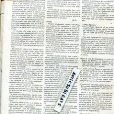 Coleccionismo de Revistas y Periódicos: 1905 VICTOR CATALA FREDERIC RAHOLA UBACH VINYETA FUTBOL CLUB F. C. BARCELONA ESPAÑOL INTERNACIONAL. Lote 62889952