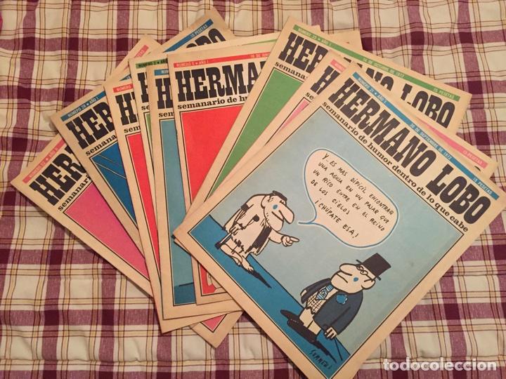HERMANO LOBO, LOTE DE 9 REVISTAS. (Coleccionismo - Revistas y Periódicos Modernos (a partir de 1.940) - Otros)