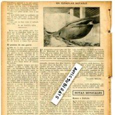 Coleccionismo de Revistas y Periódicos: REVISTA AÑO 1912 LA PRIMERA BALLENA DISECADA DE ESPAÑA PESCADA EN SANT FELIU DE GUIXOLS SOLER PUJOL . Lote 67293941