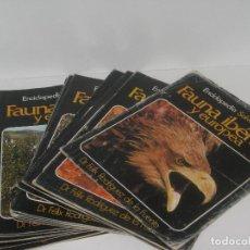Coleccionismo de Revistas y Periódicos: FAUNA IBERICA Y EUROPEA (DEL 1 AL 23). Lote 70162821