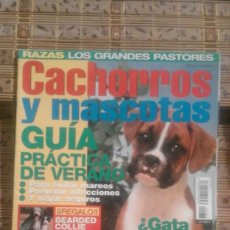 Coleccionismo de Revistas y Periódicos: REVISTA CACHORROS Y MASCOTAS Nº 77. Lote 79794517
