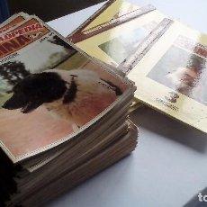 Coleccionismo de Revistas y Periódicos: GRAN ENCICLOPEDIA CANINA BRUGUERA 1980 LOTE DE 120 FASCÍCULOS. COMPLETA.. Lote 80267825
