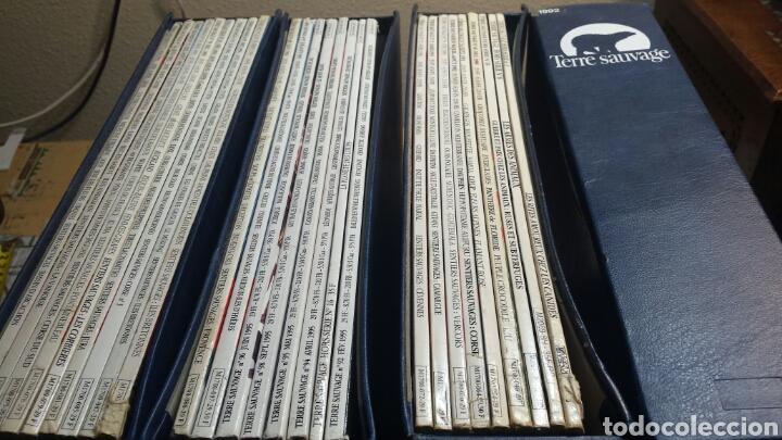 COLECCIÓN TERRE SAUVAGE AÑOS 92-93-94-95 (Coleccionismo - Revistas y Periódicos Modernos (a partir de 1.940) - Otros)