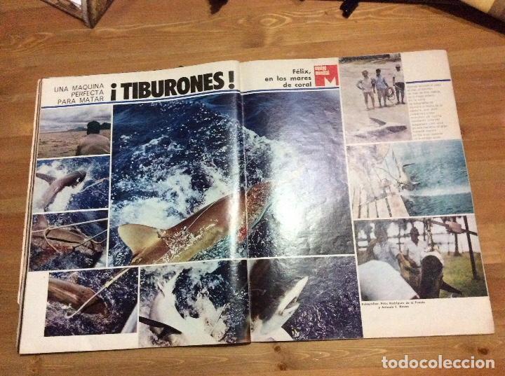 FÉLIX RODRÍGUEZ DE LA FUENTE. LA ACTUALIDAD ESPAÑOLA. 19-ABRIL-1973. N 1.111 (Coleccionismo - Revistas y Periódicos Modernos (a partir de 1.940) - Otros)