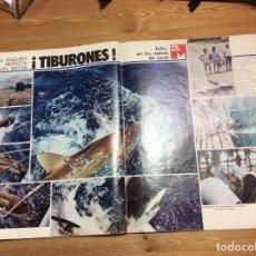 Coleccionismo de Revistas y Periódicos: FÉLIX RODRÍGUEZ DE LA FUENTE. LA ACTUALIDAD ESPAÑOLA. 19-ABRIL-1973. N 1.111. Lote 85173104