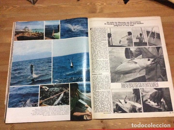 Coleccionismo de Revistas y Periódicos: Félix Rodríguez De la Fuente. La Actualidad Española. 19-abril-1973. N 1.111 - Foto 2 - 85173104