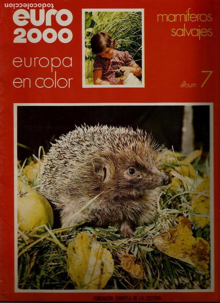 EURO 2000 - N 7 - MAMIFEROS SALVAJES - ED. VICENS VIVES - COMPLETO - CROMOS SIN PEGAR - SIN USAR (Coleccionismo - Revistas y Periódicos Modernos (a partir de 1.940) - Otros)