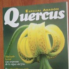 Coleccionismo de Revistas y Periódicos: ESPECIAL ARAGON - SUPLEMENTO REVISTA QUERCUS. Lote 96337123