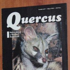 Coleccionismo de Revistas y Periódicos: REVISTA QUERCUS - CUADERNO 87 - MAYO 1993 GINETA EN DOÑANA, FRESNOS, CERCETA PARDILLA. Lote 96357207