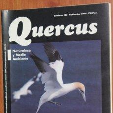 Coleccionismo de Revistas y Periódicos: REVISTA QUERCUS - CUADERNO 127 - SEPTIEMBRE 1996 AVES MARINAS, GUADARRAMA, DOÑANA, HINOJO MARINO. Lote 96357247