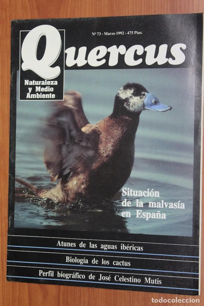 REVISTA QUERCUS - CUADERNO 73 - MARZO 1992 MALVASIA ESPAÑA, ATUNES AGUAS IBERICAS, BIOLOGIA CACTUS (Coleccionismo - Revistas y Periódicos Modernos (a partir de 1.940) - Otros)