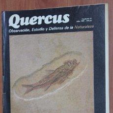 Coleccionismo de Revistas y Periódicos: REVISTA QUERCUS - CUADERNO 41 - JULIO 1989. Lote 96359319