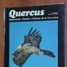 Coleccionismo de Revistas y Periódicos: REVISTA QUERCUS - CUADERNO 40 - JUNIO 1989. Lote 96359343