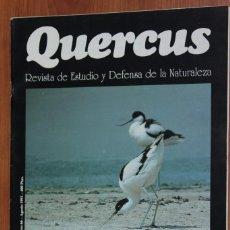 Coleccionismo de Revistas y Periódicos: REVISTA QUERCUS - CUADERNO 66 - AGOSTO 1991 HUMEDALES ESPAÑOLES, BUITRE NEGRO MALLORCA. Lote 96981015