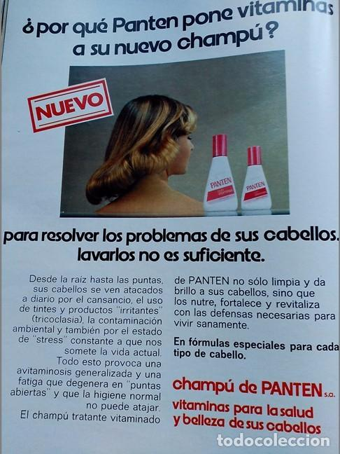 ANUNCIO CHAMPU PANTEN (Coleccionismo - Revistas y Periódicos Modernos (a partir de 1.940) - Otros)