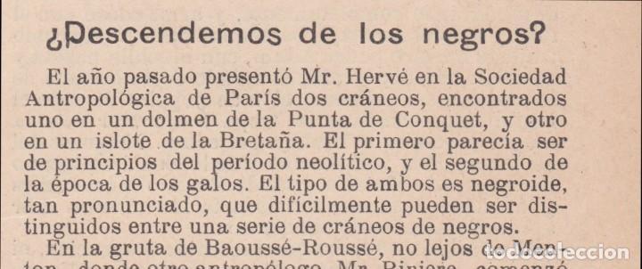 * ANTROPOLOGÍA * ¿ DESCENDEMOS DE LOS NEGROS? - 1904 (Coleccionismo - Revistas y Periódicos Antiguos (hasta 1.939))