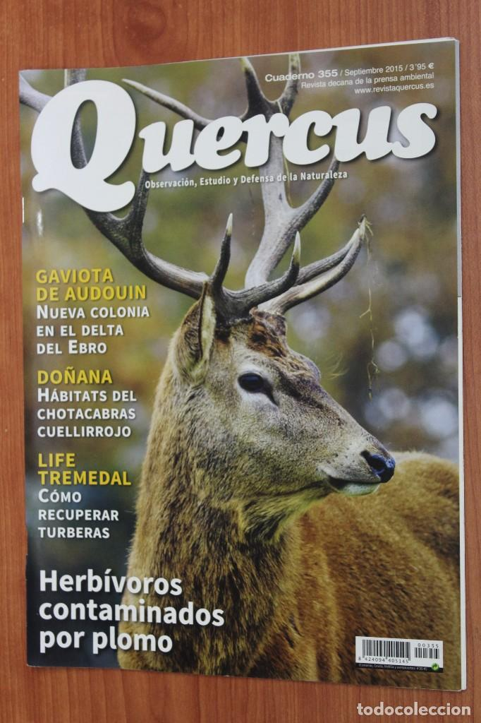 REVISTA QUERCUS - CUADERNO 355 - SEPTIEMBRE 2015 HERBIVOROS, DOÑANA, LIFE TREMEDAL, GAVIOTA (Coleccionismo - Revistas y Periódicos Modernos (a partir de 1.940) - Otros)