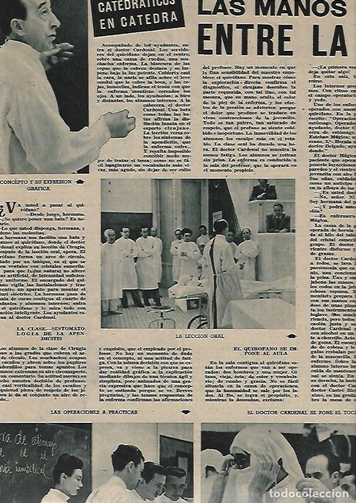 Coleccionismo de Revistas y Periódicos: AÑO 1947 RAMON GONZALEZ DE AMEZUA ORGANISTA MUSICA BELLA AURORA DOCTOR CARDENAL MEDICINA FEO PERRO - Foto 3 - 109609143