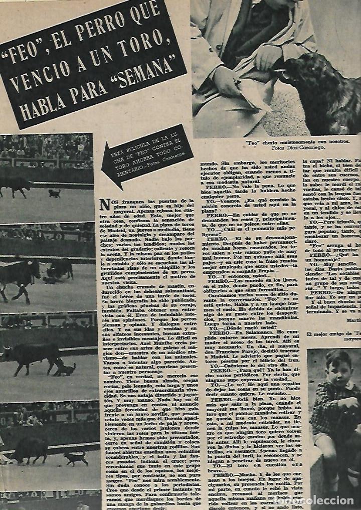 Coleccionismo de Revistas y Periódicos: AÑO 1947 RAMON GONZALEZ DE AMEZUA ORGANISTA MUSICA BELLA AURORA DOCTOR CARDENAL MEDICINA FEO PERRO - Foto 4 - 109609143