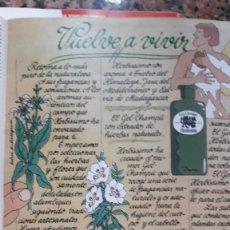 Coleccionismo de Revistas y Periódicos: ANUNCIO CHAMPU HERBISSIMO. Lote 111300463