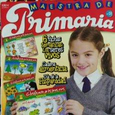 Coleccionismo de Revistas y Periódicos: REVISTA MAESTRA DE PRIMARIA N°19. Lote 112902318