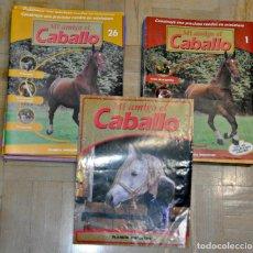 Coleccionismo de Revistas y Periódicos: MI AMIGO EL CABALLO. LOTE DE 50 FASCICULOS DE PLANETA DEGOSTINI. CON MUCHOS ACCESORIOS.. Lote 115511763