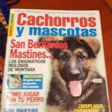 Coleccionismo de Revistas y Periódicos: REVISTA CACHORROS Y MASCOTAS NÚMERO 47. Lote 116868918