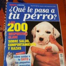 Coleccionismo de Revistas y Periódicos: REVISTA CACHORROS Y MASCOTAS EXTRA N 6. Lote 116869146