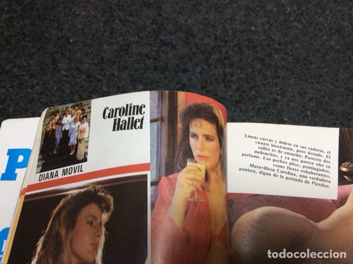 Coleccionismo de Revistas y Periódicos: PANTHER Nº 3 AÑO 1985 Caroline Hallet - Foto 3 - 165636817