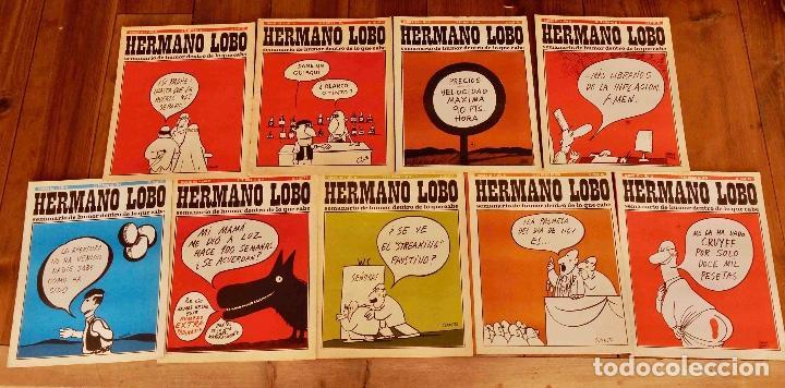 9 HERMANO LOBO (Coleccionismo - Revistas y Periódicos Modernos (a partir de 1.940) - Otros)