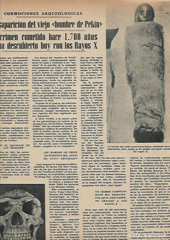 Coleccionismo de Revistas y Periódicos: AÑO 1952 CAZA ALIMAÑAS AVES RAPIÑA MADRID CENTRAL ELECTRICA SALIME HOMBRE DE PEKIN BENAVENT COCINA - Foto 3 - 120844987