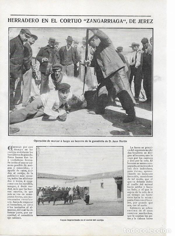 1906 HOJA REVISTA CÁDIZ JEREZ HERRADERO BECERROS CORTIJO ZANGARRIAGA GANADERÍA JUAN MARTÍN (Coleccionismo - Revistas y Periódicos Antiguos (hasta 1.939))