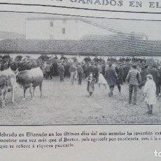 Coleccionismo de Revistas y Periódicos: CONCURSO DE GANADO EN ELIZONDO BAZTAN HOJA AÑO 1909. Lote 121986855