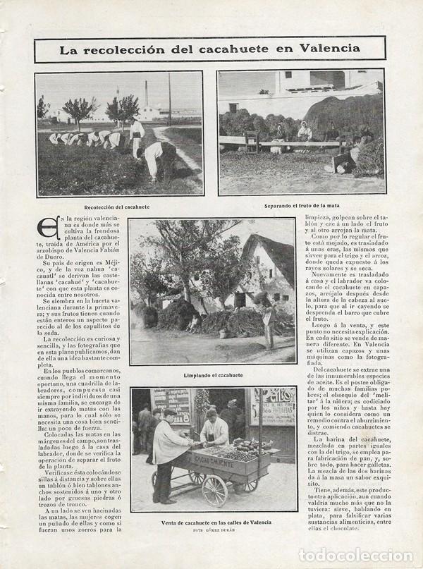1906 HOJA REVISTA VALENCIA LA RECOLECCIÓN DEL CACAHUETE VENTA EN CARRITO CALLEJERO (Coleccionismo - Revistas y Periódicos Antiguos (hasta 1.939))