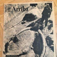 Coleccionismo de Revistas y Periódicos: ARRIBA (11-2-59) PANTANO DE YESA CANAL DE LAS BARDENAS PUERTO BARCELONA PREHISTORIA . Lote 125446995
