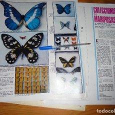 Coleccionismo de Revistas y Periódicos: RECORTE PRENSA : COLECCIONISMO DE MARIPOSAS. SABADO GRAFICO, JUNIO 1973. Lote 126340075